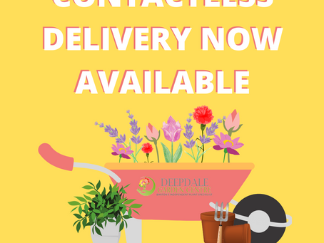 NEW Contactless Delivery's and Takeaway's at Deepdale