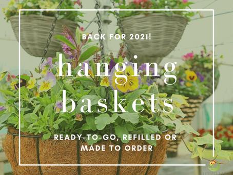 Back for 2021 - Hanging Baskets