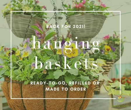 2021 Hanging Baskets