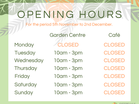 Updated Opening Hours and Information for the Lockdown Period