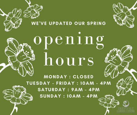 Deepdale Opening Hours