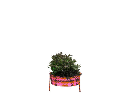 Jardin Suspendu Planter