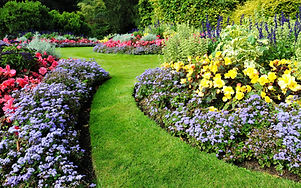 Scenic View of Colourful Flowerbeds and a Winding Grass Lawn Pathway in an Attractive English Formal