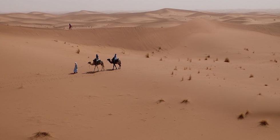La Méharée des Femmes, désert marocain