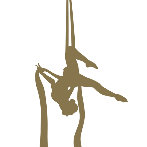 Aerial Silk Abo (Gruppenkurs)