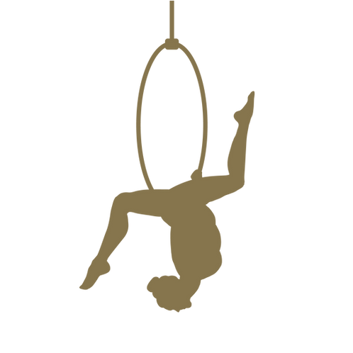 Aerial Hoop Abo (Gruppenkurs)