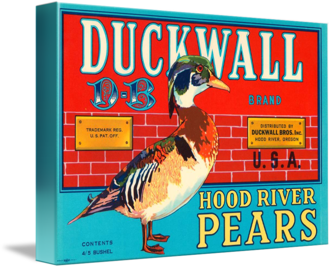 Duckwall-Pears-Fruit-Crate-Label_art