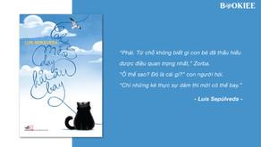 Chuyện Con Mèo Dạy Hải Âu Bay - Luis Sepúlveda