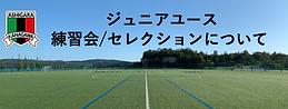 スクリーンショット 2021-02-16 12.24.15.png
