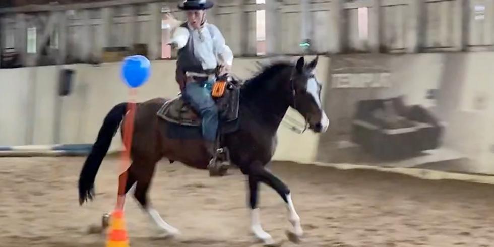 Alkeiskurssi omilla hevosilla