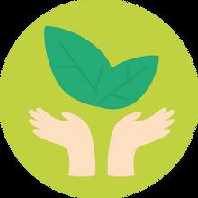 Viver a sustentabilidade