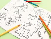 Cadernos para colorir