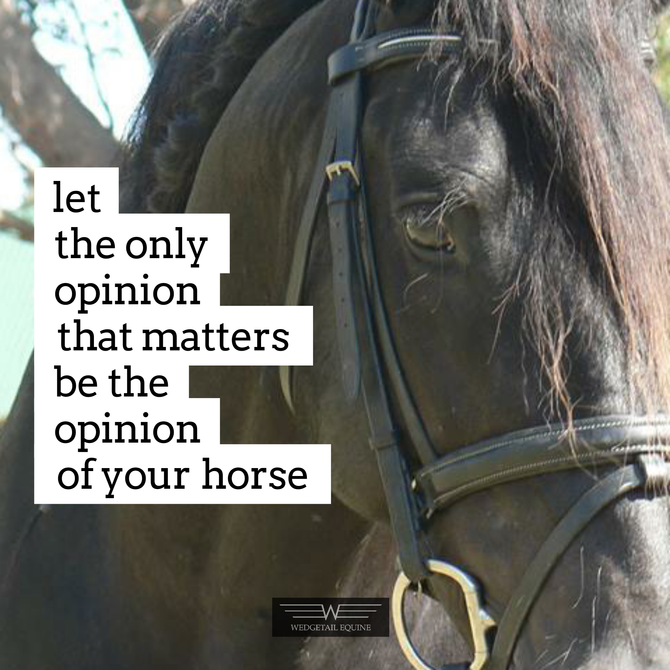 Let the only opinion of your riding that matters, be the opinion of your horse