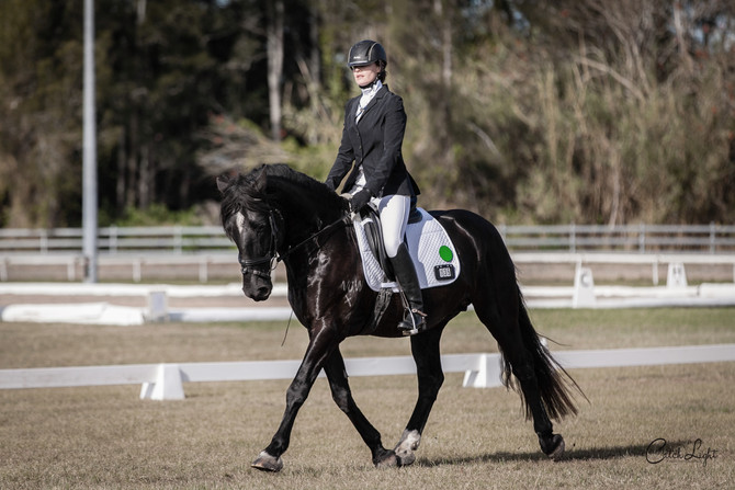 Catch Light Photoimaging caught some happy snaps of Varekai at the Regional Dressage Festival