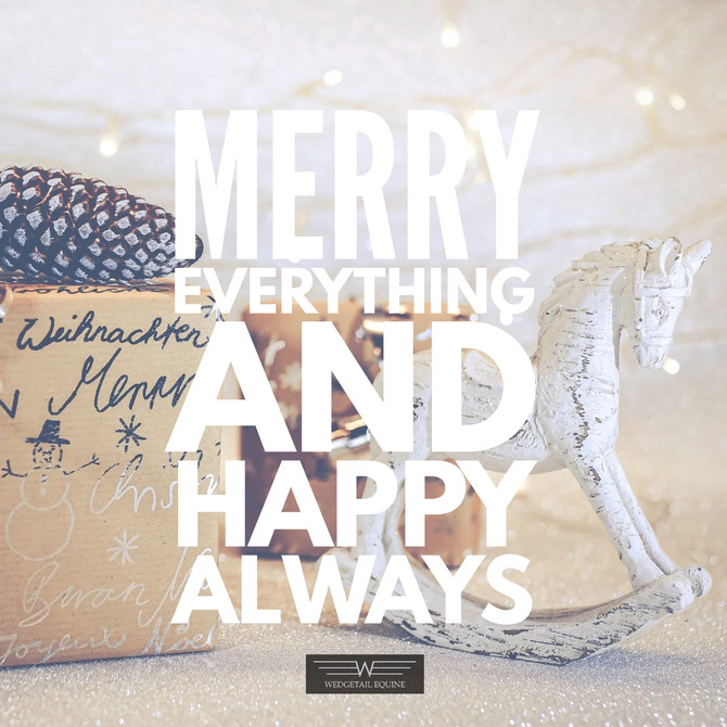 Merry Everything & Happy Always