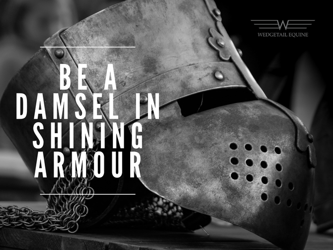 Be a damsel in shining armour