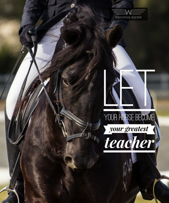 LET your horse become your greatest teacher