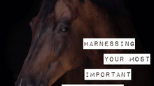 What is REALLY holding your riding back?