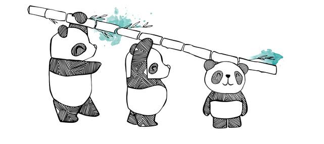 Our first design: Follow the Panda