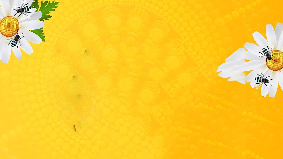 web backround yellow.jpg