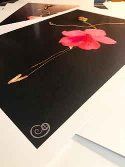 Flat Print Detail