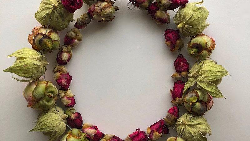 Mutabilis Camellia String