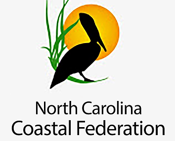 NCCF-logo-(2).png