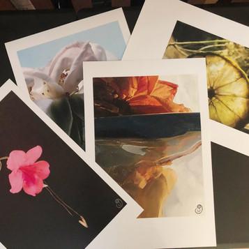 Flat Prints