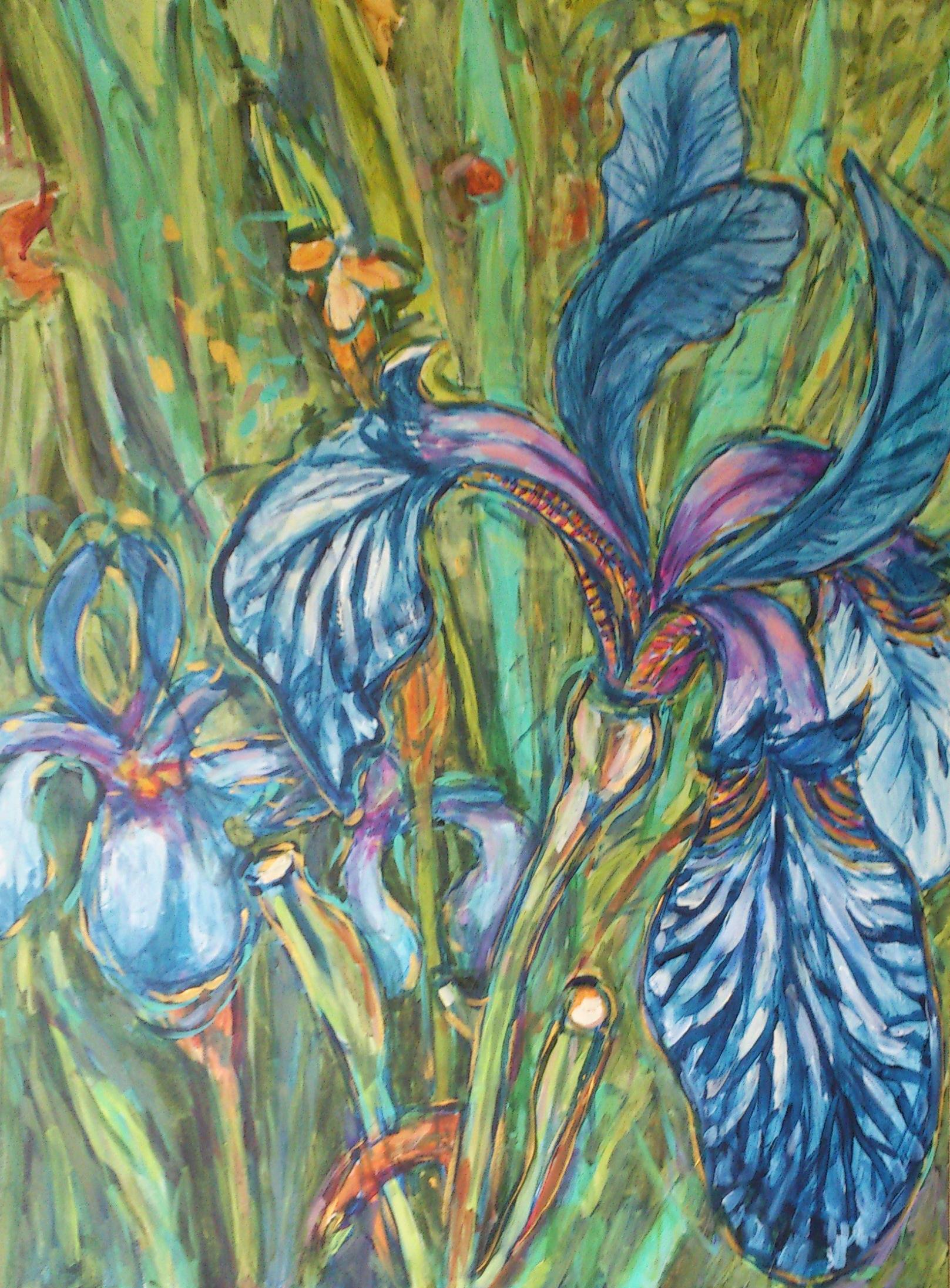 blue-iris.jpg