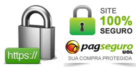 site_seguro.png