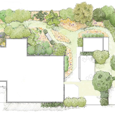 A Residential Property with 100% Native Planting