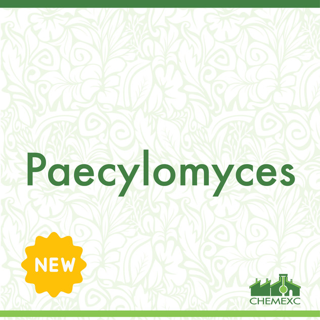Paecylomyces