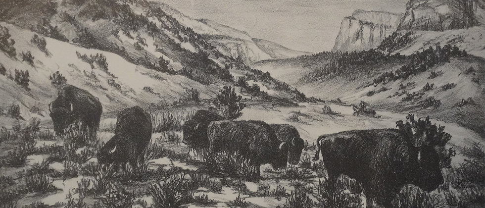 """ Buffalo"" By Charles Strausenbeck Lithograph"