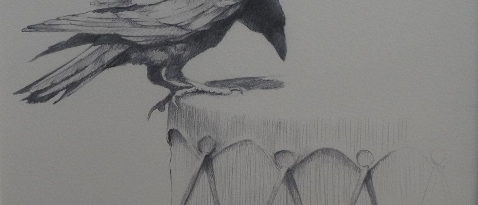 """Drum Raven"""