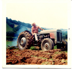 My father ploughing at Wigham in Devon