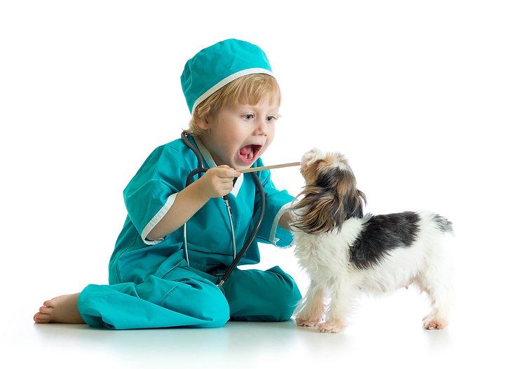 Junge untersucht Zähne von Hund