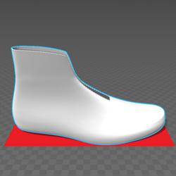 The RoboShoe Lining