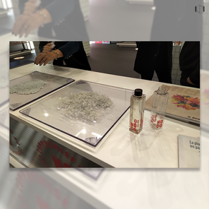 Posts_Cosmoprof_2019 no.co.png