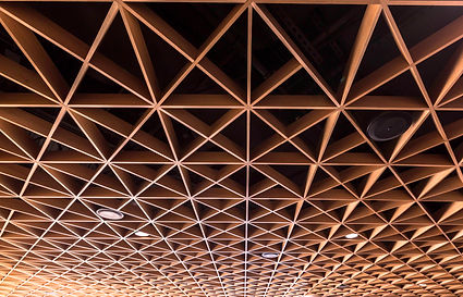 Walton Performance Arts Center Ceiling.j