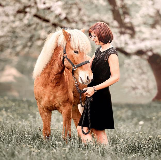Pferde Fotoshooting Luzern