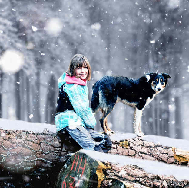Bild 11 Tierfotograf Hunde Fotoshooting Luzern.jpg