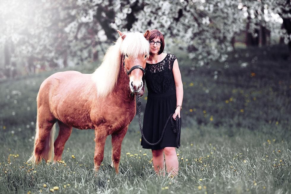 Pferde Fotoshooting Luzern Zentralschwei