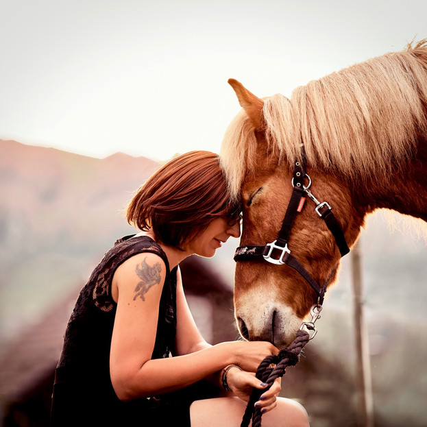 Bild 3 Tierfotograf Pferde Fotoshooting Luzern.jpg