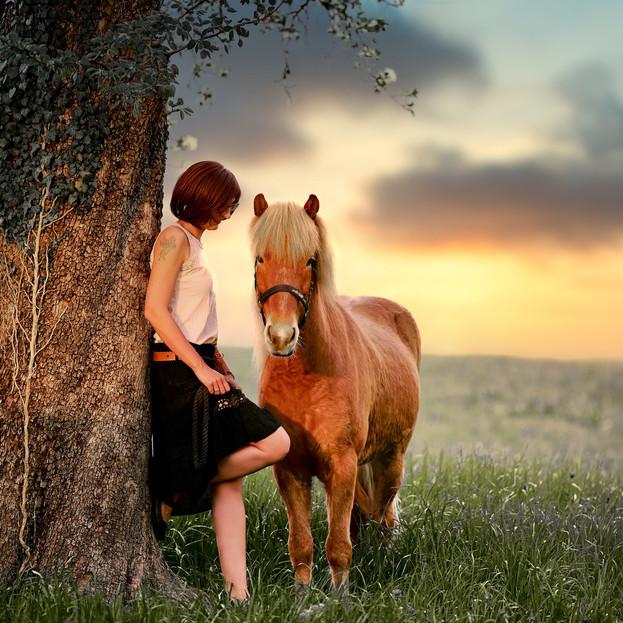 Bild 8 Tierfotograf Pferde Fotoshooting Luzern
