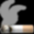 smoking-symbol_1f6ac.png