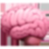 brain_1f9e0.png