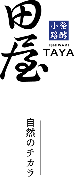logo+.png