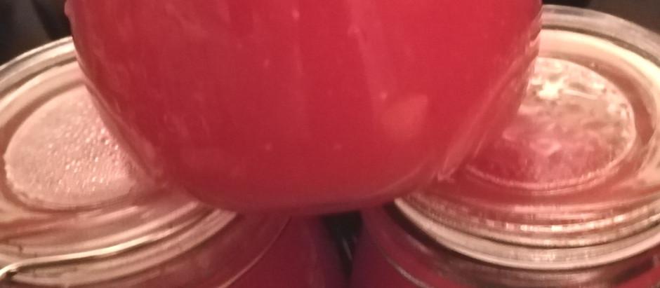 Aus den letzten sonnengereiften Tomaten