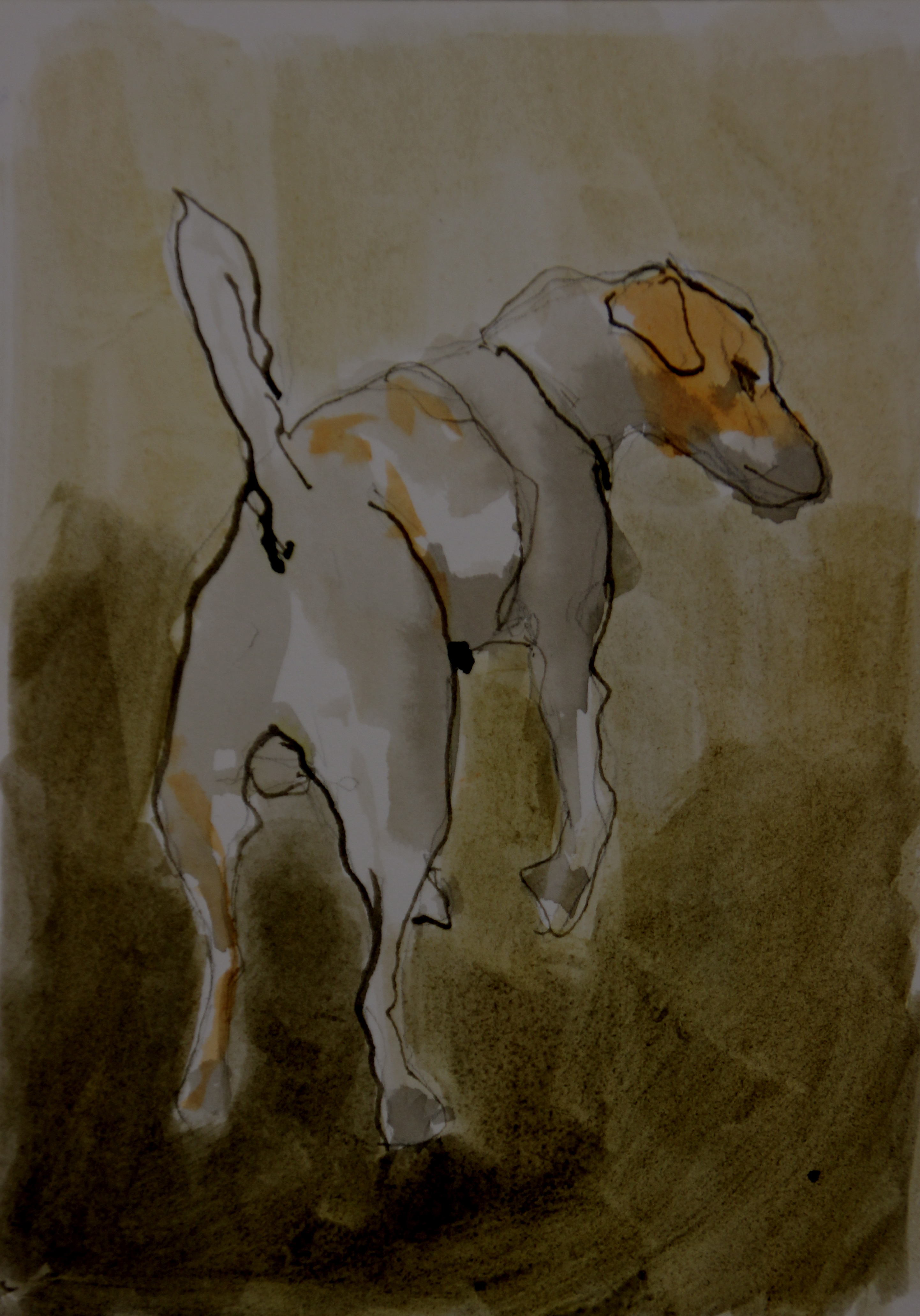 Jack Russell - Vence #5, 2015