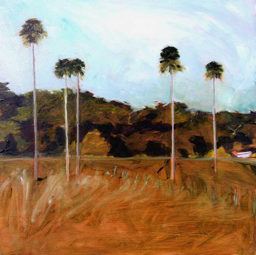 Bobs Farm Palms III